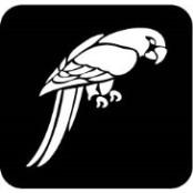 šablona za izradu airbrush ili glitter privremene tetovaže PAPIGA (paket od 5 kom)