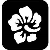 šablona za izradu airbrush ili glitter privremene tetovaže RUZA 15 (paket od 5 kom)
